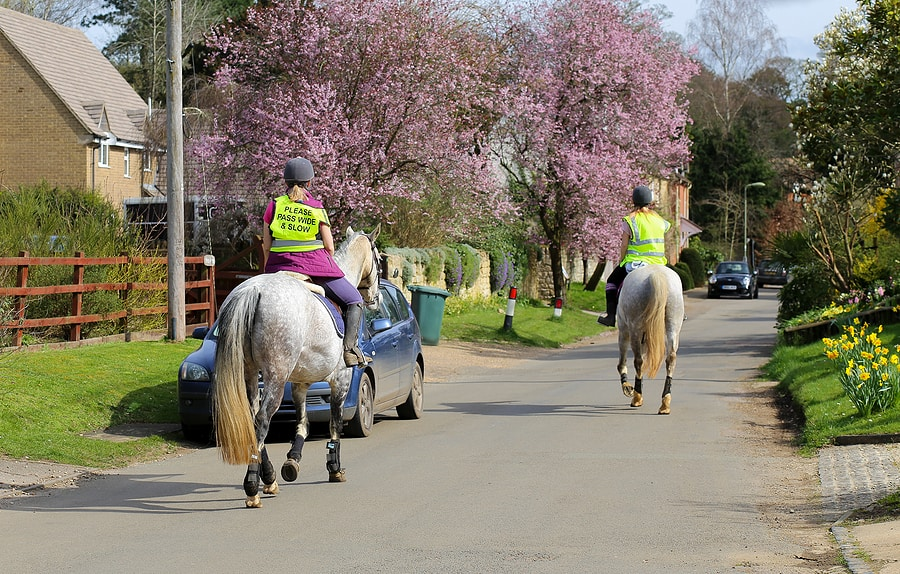 horses riding on a village road
